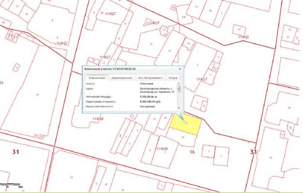Схема расположения участка на кадастровой карте